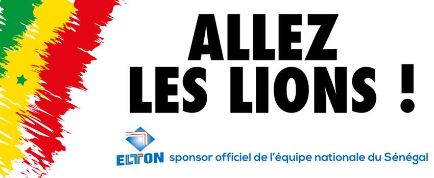 allez-les-lions-2017-elton-850x350
